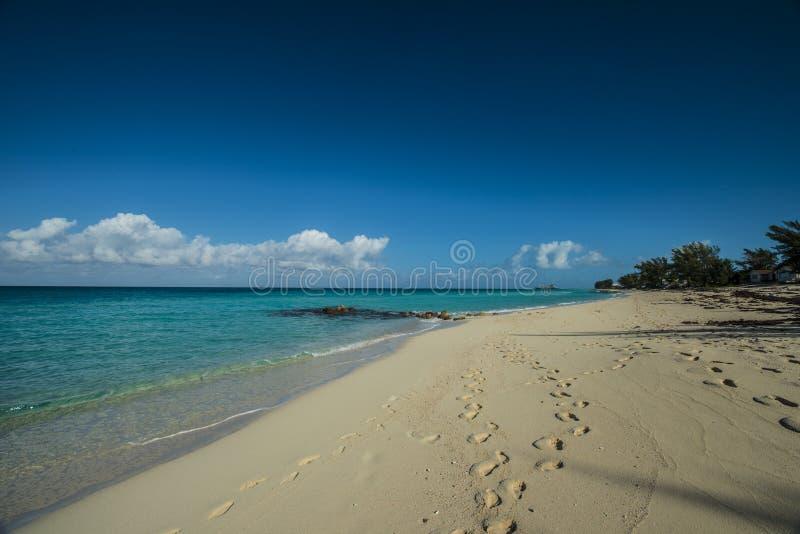 Bimini海滩 库存照片