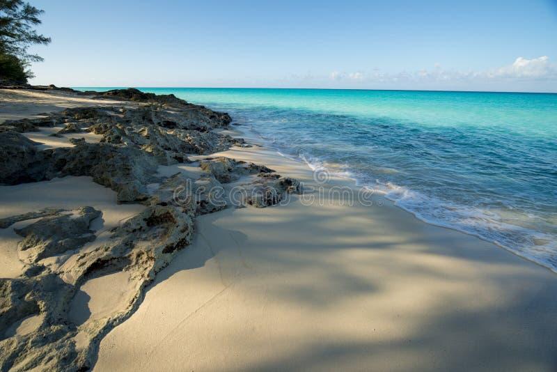 Bimini海滩Bahama 免版税图库摄影