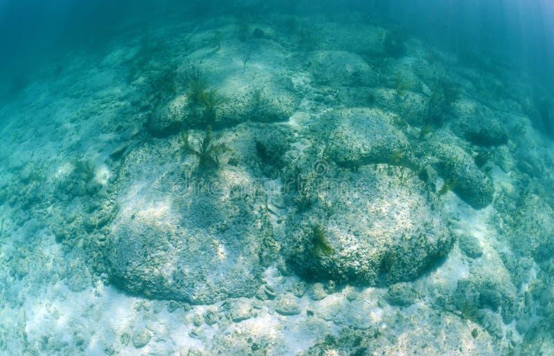 Bimini路是水下的岩层 免版税库存照片