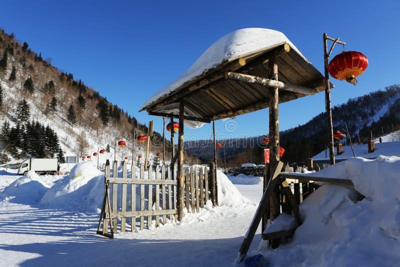 Bimodal lasu gospodarstwo rolne w Heilongjiang prowinci - Śnieżna wioska obraz royalty free