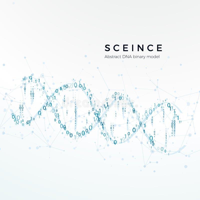 Binär modell för abstrakt DNA kodad genetiskt Vetenskap och futuristiskt begrepp Vektorillustration som isoleras på vit royaltyfri illustrationer