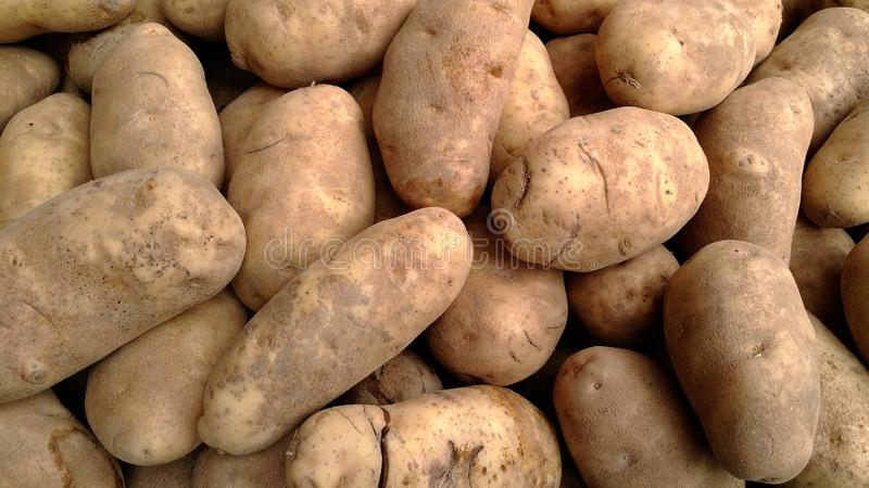Potatoes at a vegetable stand royalty free stock images