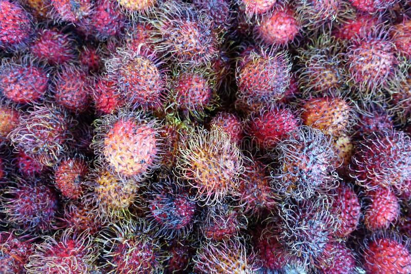 A Bin of Lychee Fruit for Sale at a Farmers` Market. A Bin of Lychee Fruit Rambutan for Sale at a Farmers` Market stock images
