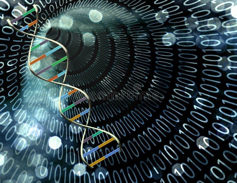 Binaire tunnel en DNA royalty-vrije illustratie