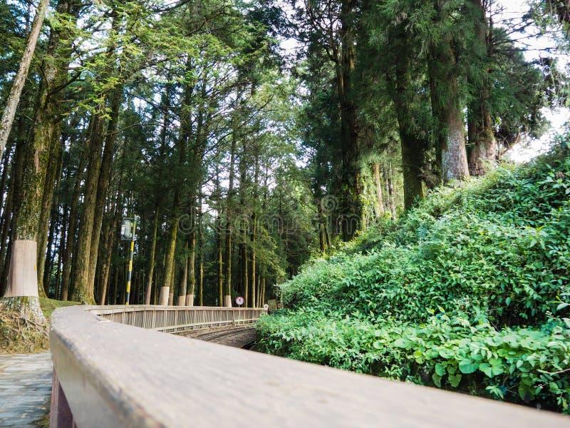 Binari ferroviari del lato di legno del balcone immagine stock