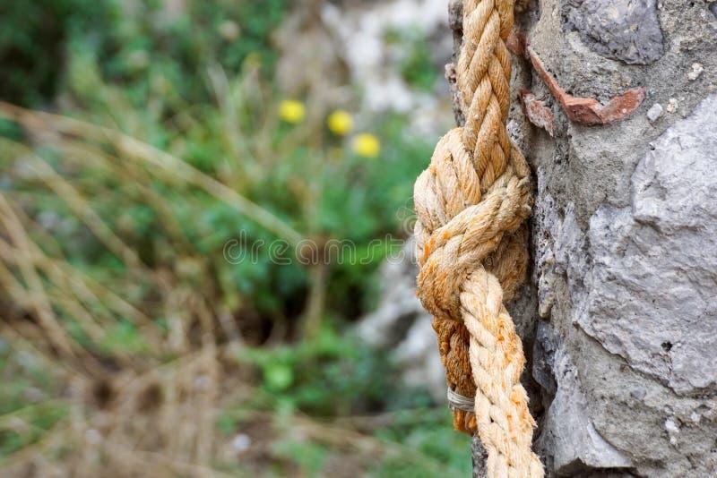 Binda med rep nautisk kabel för repet som stark anslutningsbegreppsbakgrund fotografering för bildbyråer
