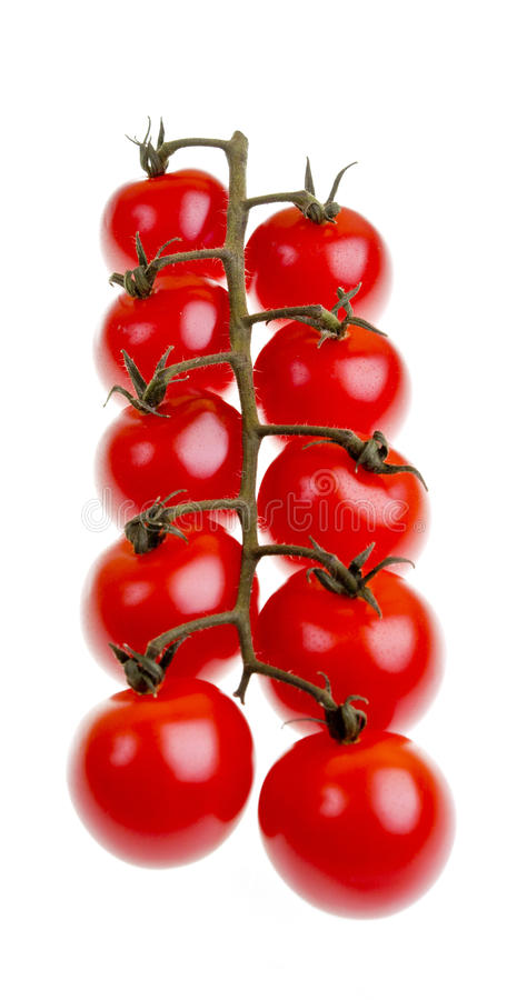 Binder Cherry Tomatoes lizenzfreie stockfotografie
