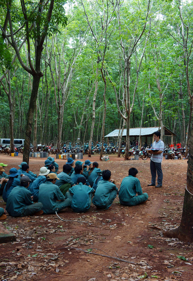 Download Worker Meeting At Rubber Plantation Editorial Stock Image - Image: 33467639