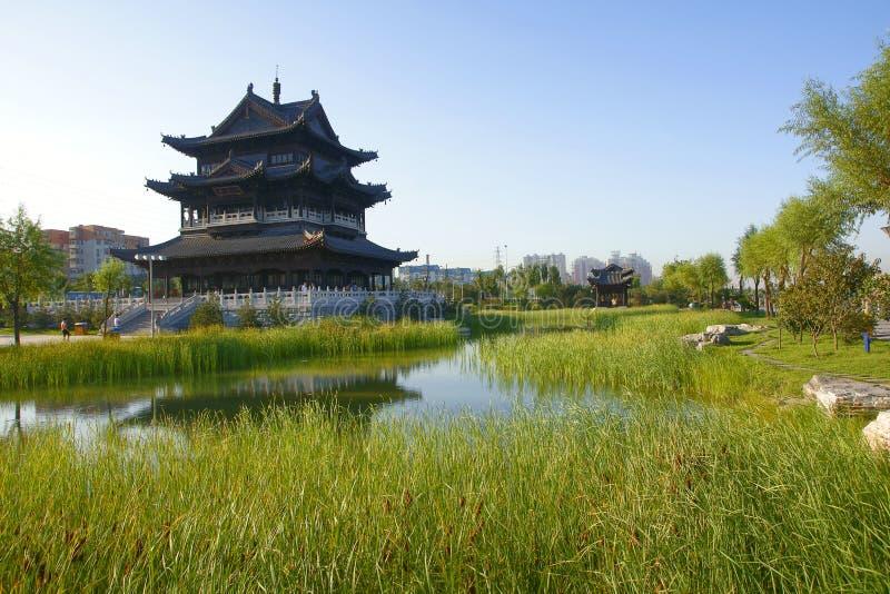 Download Binhe park stock image. Image of china, plant, reeds - 15645659