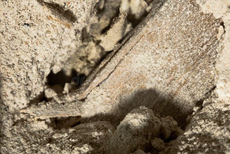 Binnen de verbrijzelde, afbrokkelende muur met een houten overlappende macro stock afbeelding