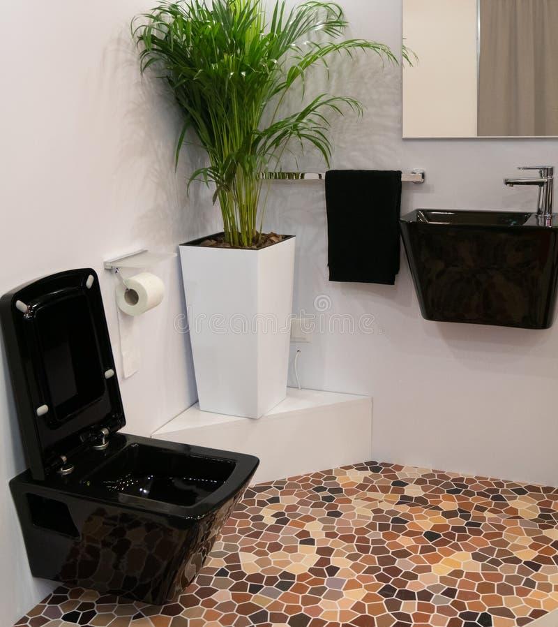 Binnen modern hoteltoilet met modieus zwart toilet en wasbak grote bloempot in een hoek met altijdgroene installatie stock foto