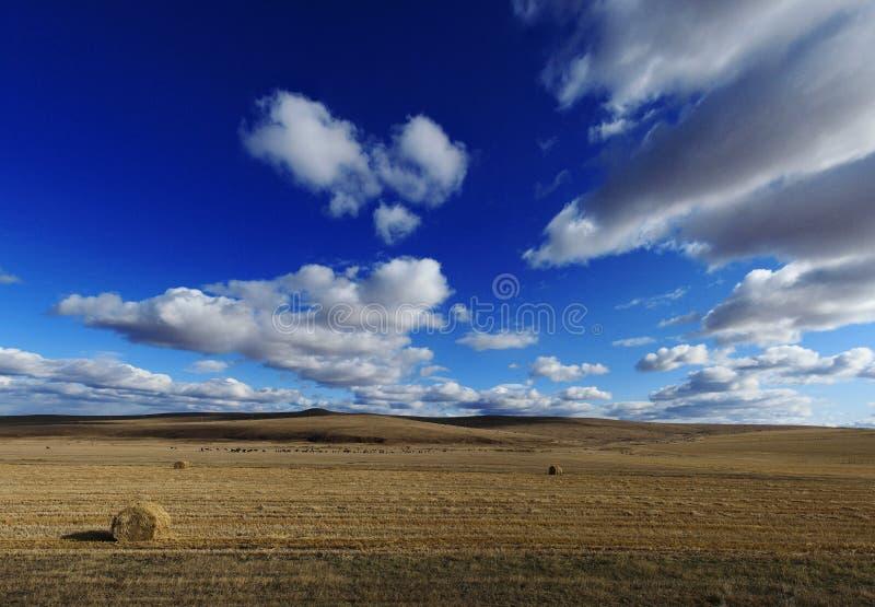 Binnen Mongolië royalty-vrije stock fotografie