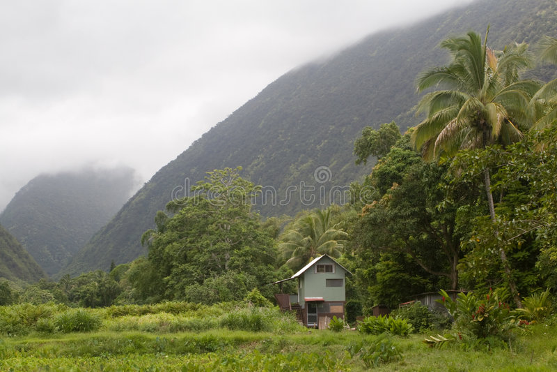 Binnen vallei Waipi'o op Hawaï stock foto's
