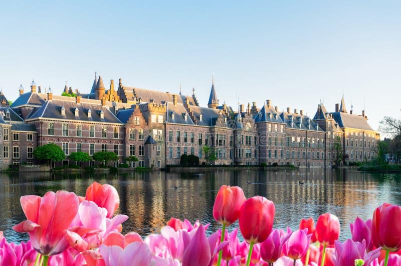 Binnenhof - le Parlement néerlandais, Hollande photo stock