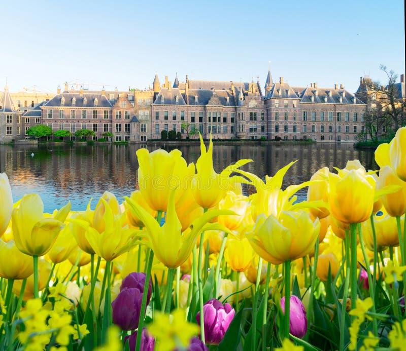 Binnenhof - o parlamento holandês, Holanda ilustração stock