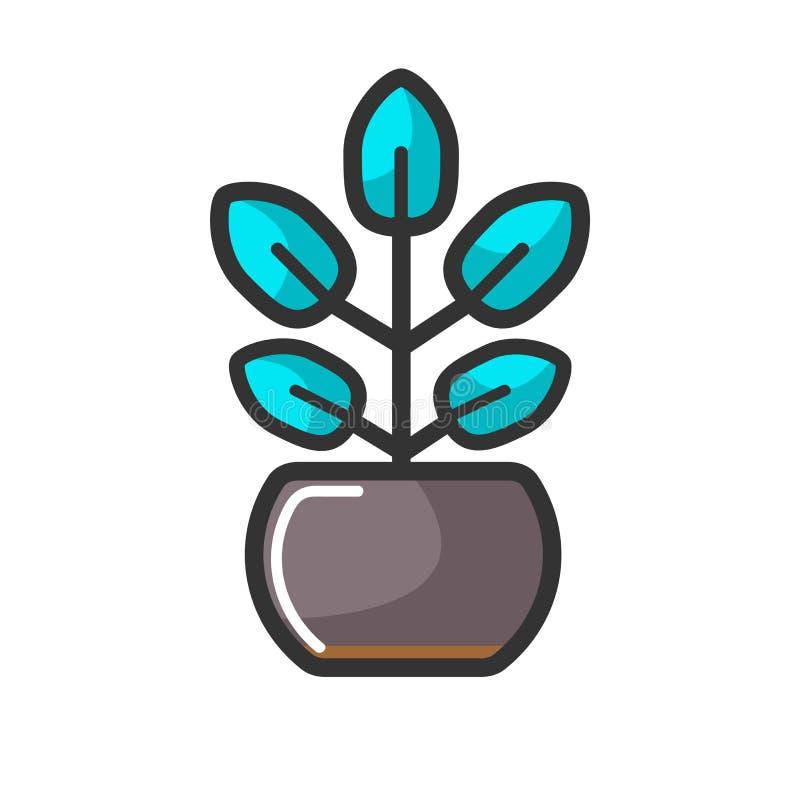 Binneninstallatie in pot met ongebruikelijke turkooise bladeren vector illustratie