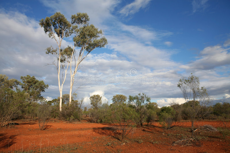 Binnenland Australië royalty-vrije stock afbeelding