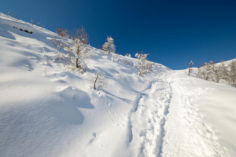 Download Binnenland het ski?en stock foto. Afbeelding bestaande uit vrijheid - 29502516