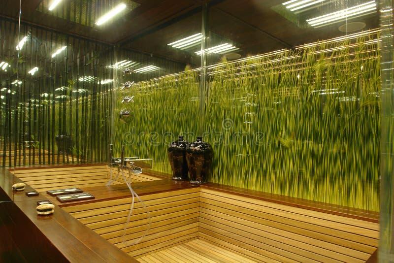 Binnenland van een badkamers royalty-vrije stock afbeeldingen