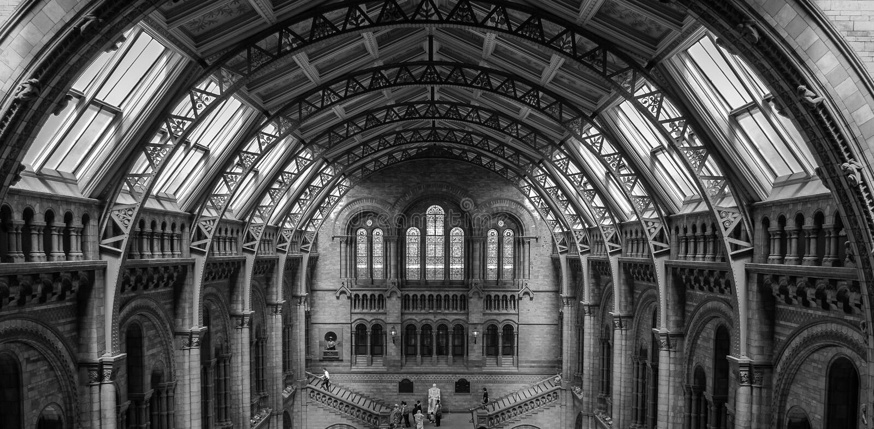 Binnenland van het Biologiemuseum van Londen stock afbeeldingen