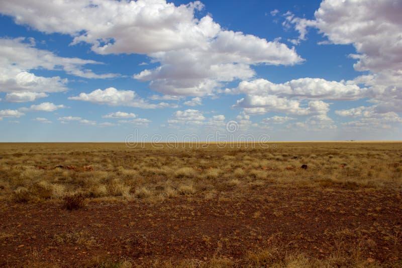Binnenlandlandschap met mooie bewolkte hemel op het Noordelijke Grondgebied van Australië stock afbeeldingen