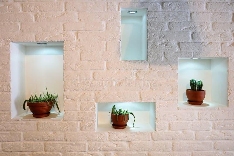 Binnenlands ontwerp met witte die bakstenen muur met cactus wordt verfraaid royalty-vrije stock afbeelding
