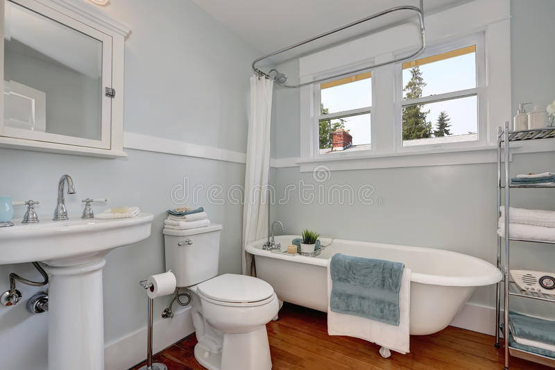 Binnenlands ontwerp van vakmanbadkamers met pastelkleur blauwe muren royalty-vrije stock afbeelding