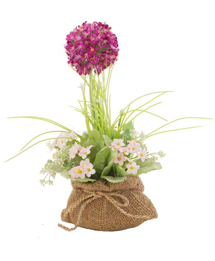 Binnenlandse plastic bloem in zak royalty-vrije stock foto