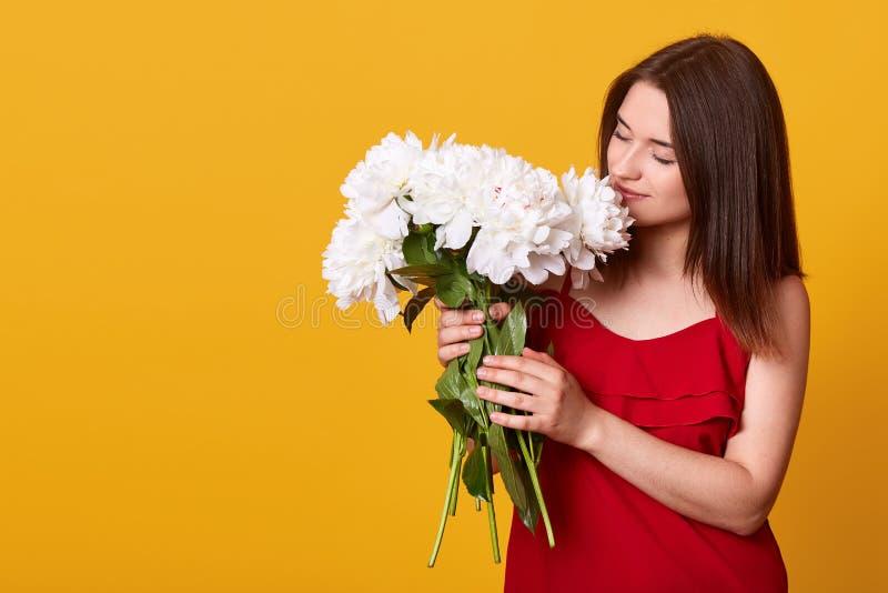 Binnenschot van aantrekkelijke tedere zoete dame in het rode kleding stellen ge?soleerd over gele achtergrond, die witte bloemen  stock afbeeldingen