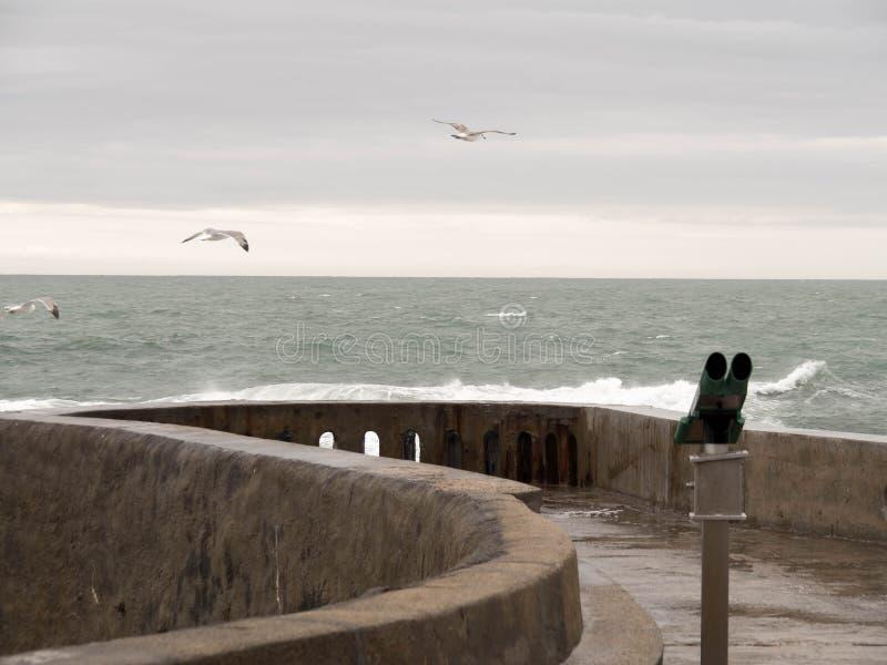 Binoculair en drie zeemeeuwen die vanaf de kust vliegen stock fotografie