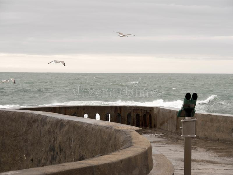 Binocular and three seagulls flying away from the coast stock photography