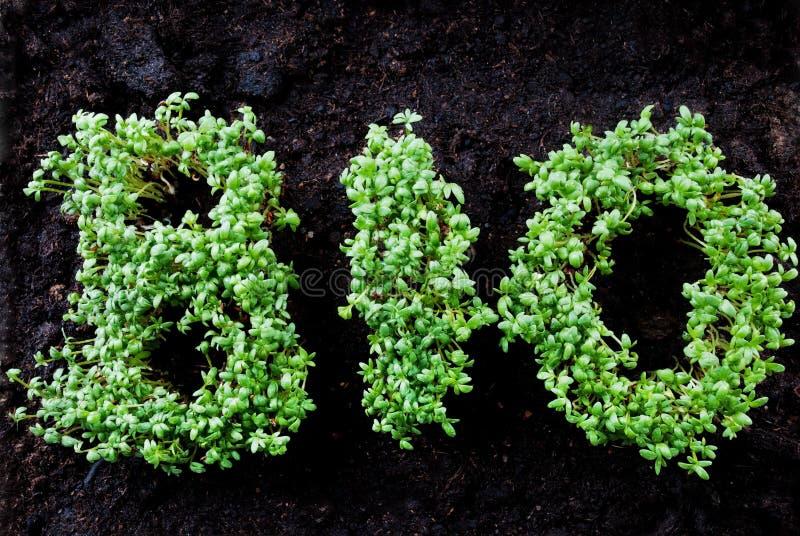BIO écrit avec l'herbage images stock