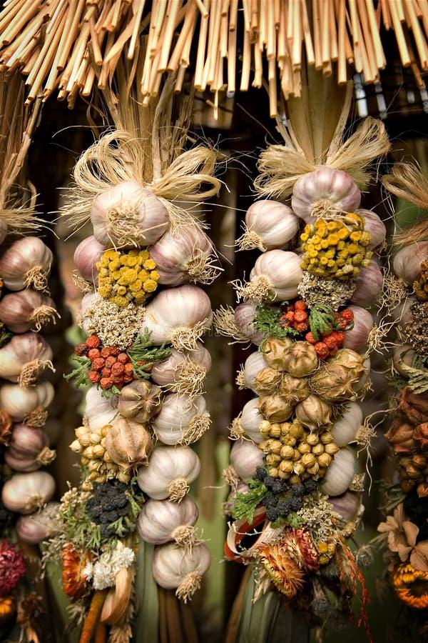 Bio- aglio fotografia stock