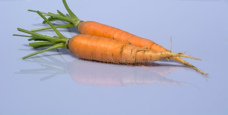 Bio carottes images stock