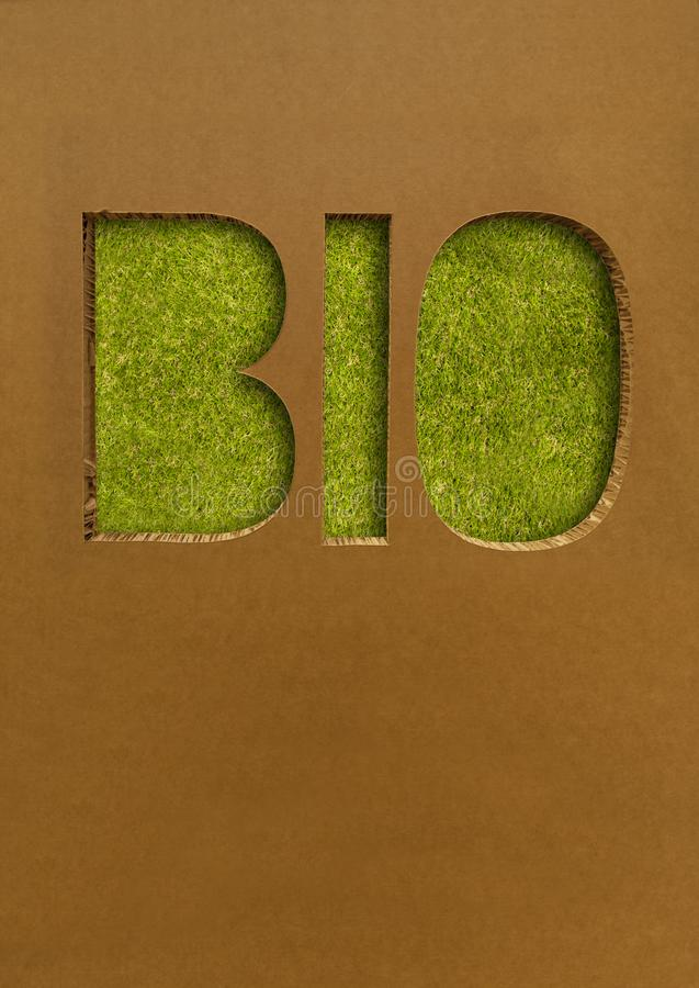 Bio concepto con el cartón y la hierba imagenes de archivo