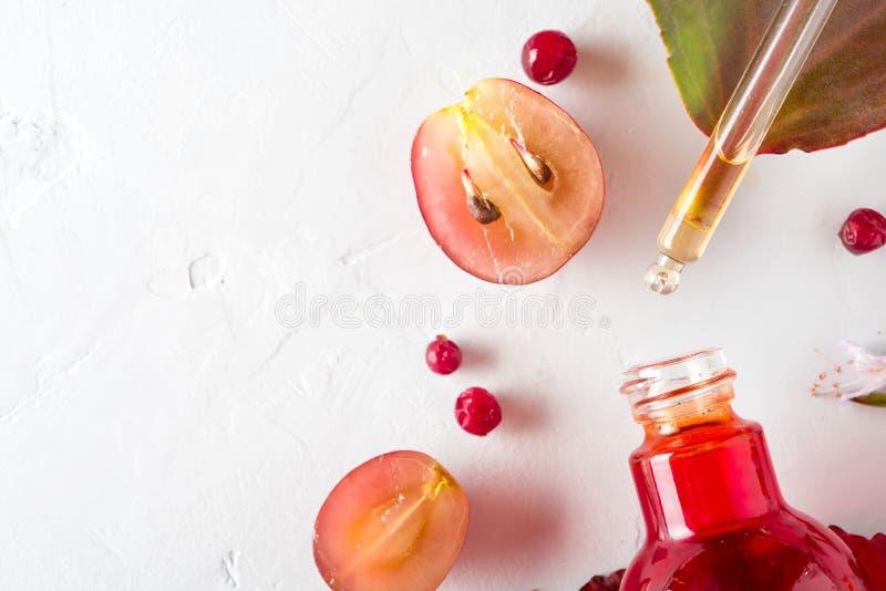 Bio- cosmetici organici con gli ingredienti di erbe estratto, oli di semi dell'uva, siero Copi lo spazio, la disposizione del pia immagine stock libera da diritti