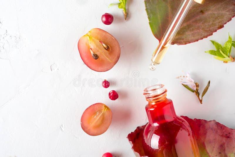 Bio- cosmetici organici con gli ingredienti di erbe estratto, oli di semi dell'uva, siero Copi lo spazio, la disposizione del pia immagine stock