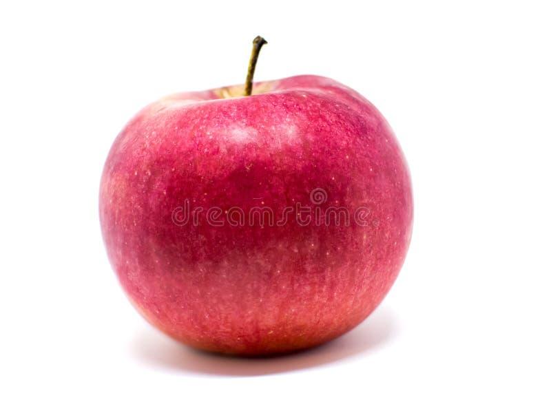 Bio couleur naturelle rouge d'Apple photographie stock