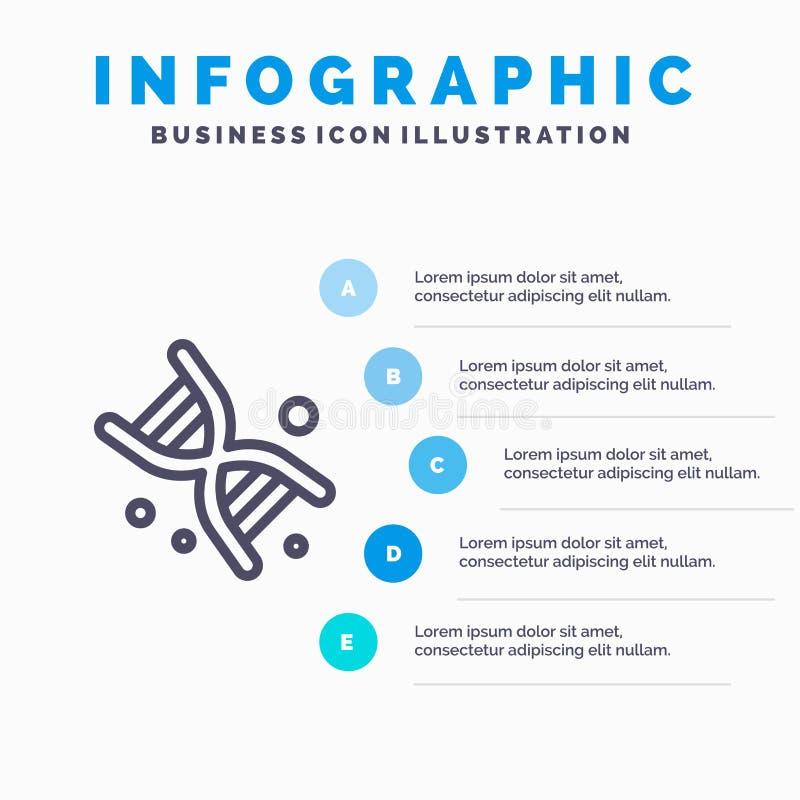 Bio, DNA, genética, línea icono de la tecnología con el fondo del infographics de la presentación de 5 pasos libre illustration