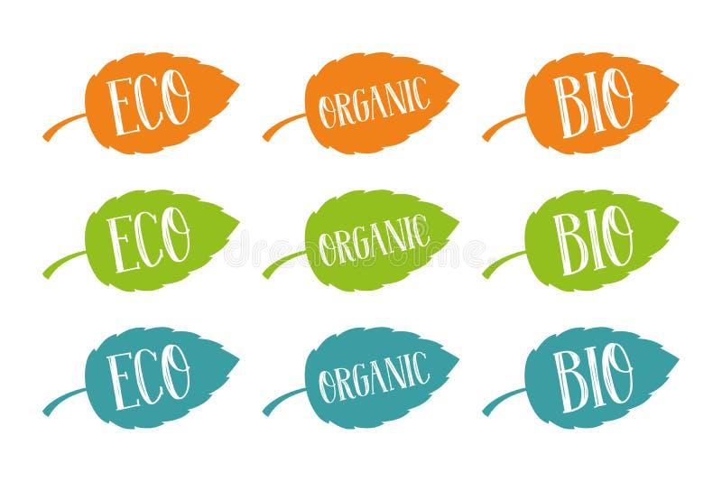Bio e orgânico vetor de Eco, ajustado para a Web e a cópia Tipografia tirada mão nas folhas coloridas ilustração stock