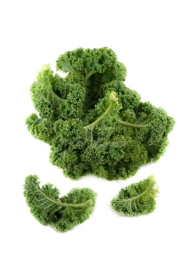 Bio-Fresh Green Kale auf weißem Hintergrund stockfoto