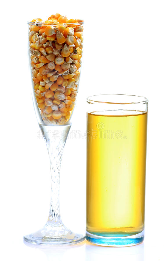 Bio fuel. Corn and bio fuel glass isolated on white background stock photo