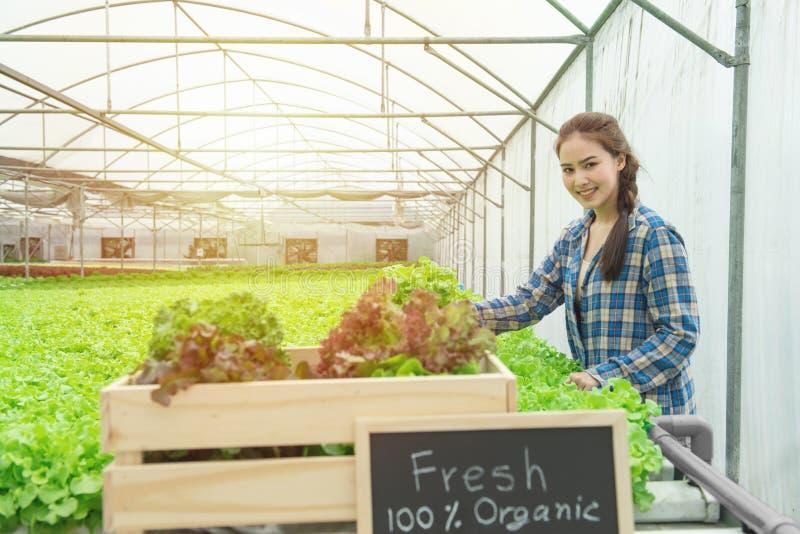 Bio-Gemüsefarm, Betriebszüchter, gesunder Lebensmittelbegriff, frisch aus Farm-Text auf Tafelschwarz in ökologisch-hydroponisch b stockfotos