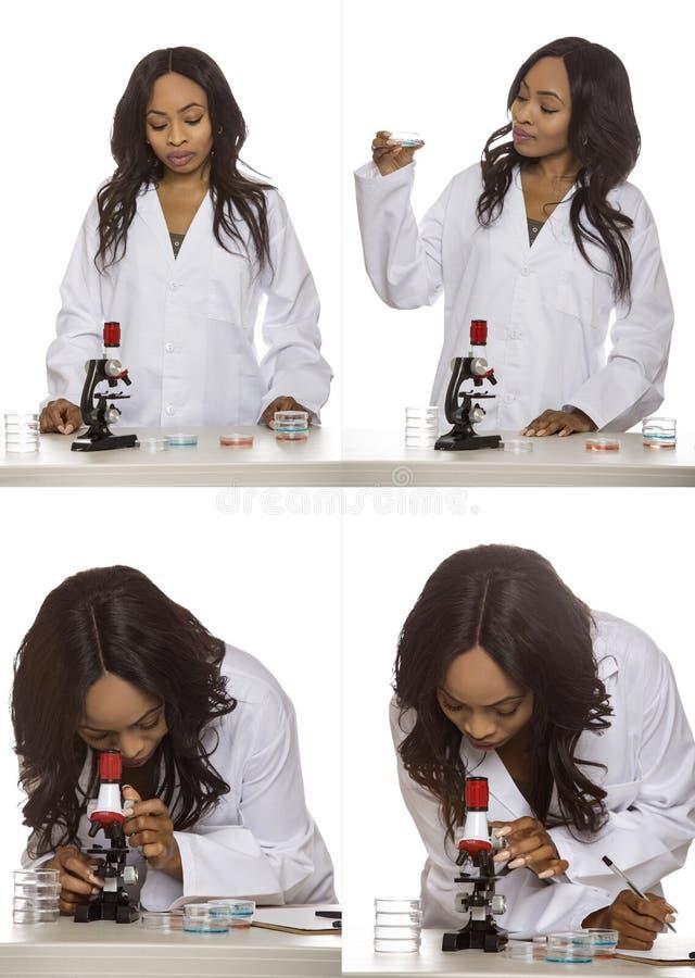 Bio- ingegnere femminile o studente di medicina fotografia stock