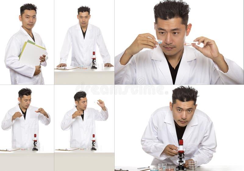 Bio- ingegnere o scienziato asiatico Doing Research immagini stock libere da diritti