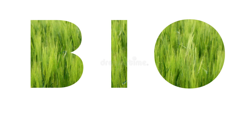 Bio- iscrizione Concetto di Eco Fondo di erba verde viva del prato immagine stock libera da diritti