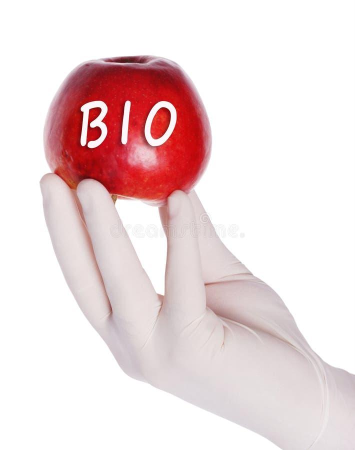 Bio- mela rossa immagini stock libere da diritti