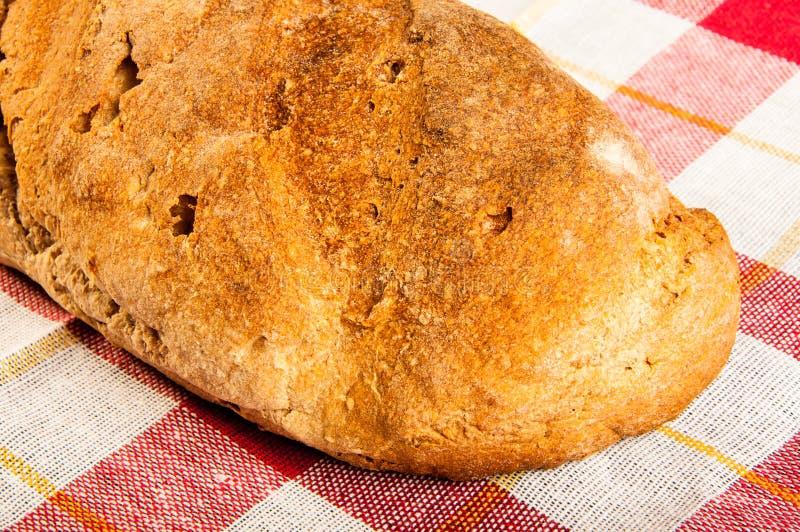 Bio och nytt bakat bröd i närbild royaltyfria bilder