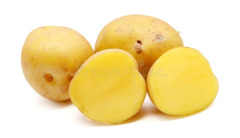 A bio russet potato isolated white background. Group of yellow tasty new potato isolated on white background close up. Fresh, pile royalty free stock photo