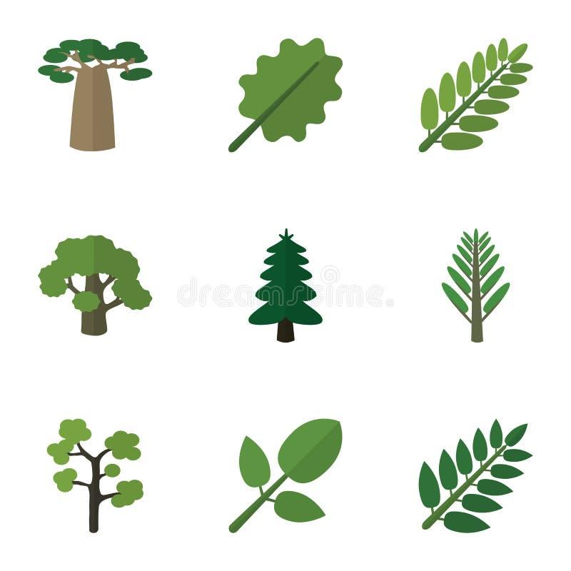 Bio sistema del icono plano de árbol, de selva, de hoja del acacia y de otros objetos del vector También incluye el acacia, folla ilustración del vector